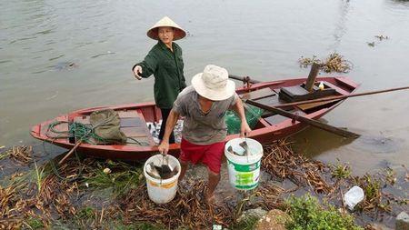 Mien Trung hoi ha ra khoi nha chong Bao so 10 - Anh 6