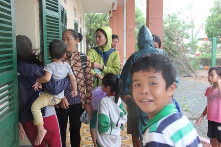 Quang Binh: Sieu bao tan pha - Anh 3