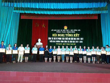 Thai Nguyen: Tap huan cong tac Doi va phong trao thieu nhi nam hoc 2017-2018 - Anh 2