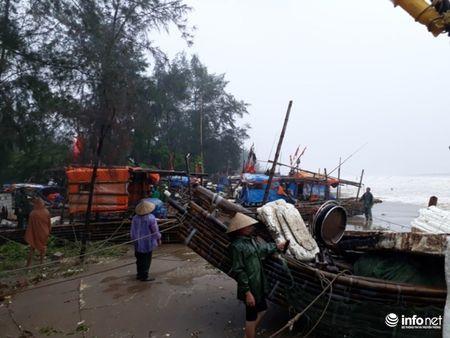 Thanh Hoa: Nguoi dan dam mua keo be tranh bao - Anh 10