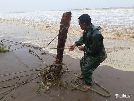 Thanh Hoa: Nguoi dan dam mua keo be tranh bao - Anh 6