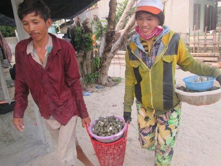 Diep Son (Khanh Hoa): 'Thay da doi thit' nho du lich! - Anh 2