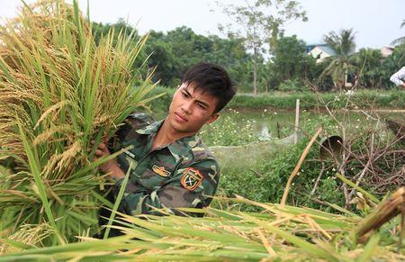 Bo doi gat lua chay bao giup dan - Anh 8