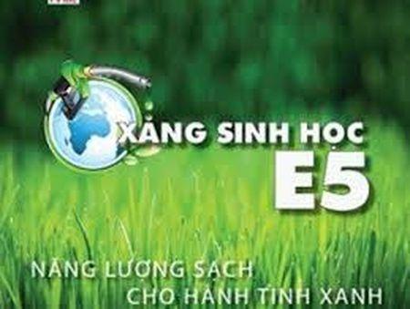 Xang E5 thay the Ron 92: Can bao dam nguon cung - Anh 1