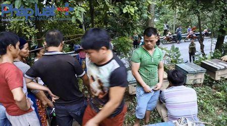 Ha Giang: Tu y mo nap thung, bat den bac trieu khi bi ong dot - Anh 1