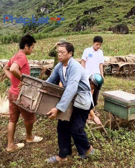 Ha Giang: Tu y mo nap thung, bat den bac trieu khi bi ong dot - Anh 4