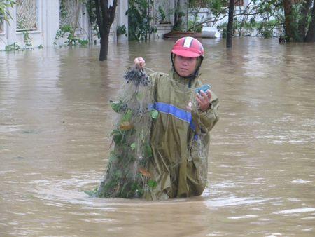 Quang Binh: Sinh vien nuoc ngoai xuong pho tung chai bat ca 'khung' sau bao - Anh 2