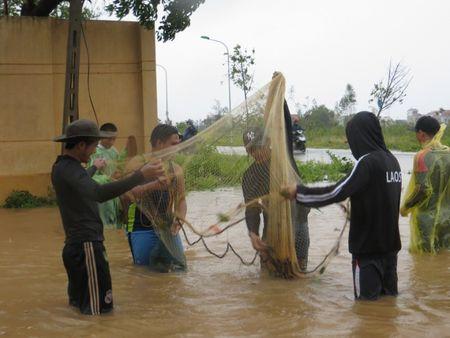 Quang Binh: Sinh vien nuoc ngoai xuong pho tung chai bat ca 'khung' sau bao - Anh 3