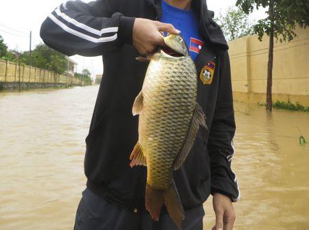 Quang Binh: Sinh vien nuoc ngoai xuong pho tung chai bat ca 'khung' sau bao - Anh 7
