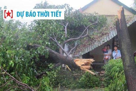 """Sieu bao so 10 vao den noi, nhieu ho dan van """"lung khung"""" chua chiu so tan - Anh 1"""