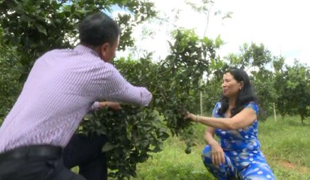 Thu tien ty nho trong quyt duong canh - Anh 2