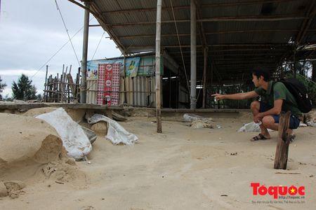 Hau bao so 10: Hang quan kinh doanh ven bien khac phuc hau qua de phuc vu du khach - Anh 1