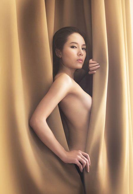 Khoa than chup anh nghe thuat, my nhan Viet 'hung bao du luan' - Anh 1