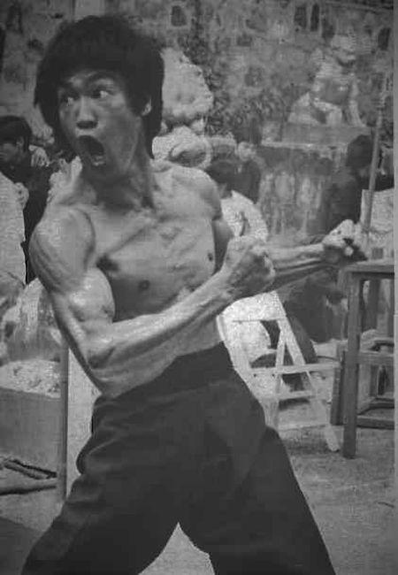 Ly giai ve co lung dang cap 'hinh cay thong' cua Ly Tieu Long - Anh 6