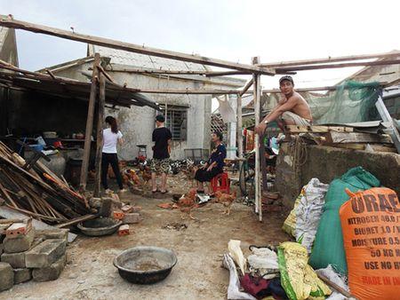 Ha Tinh: Huyen Cam Xuyen tan hoang sau bao - Anh 5