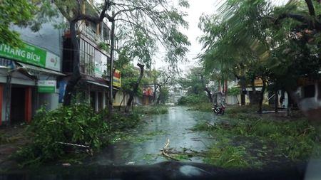 Quang Binh tan hoang sau con bao so 10 - Anh 2