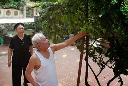 Co mot han si xu Thanh - Ky cuoi: Trung rong thi de... - Anh 1