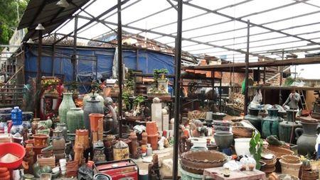 Dan tra mat bang 50 ki-ot dat san bay Tan Son Nhat - Anh 4
