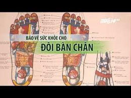 Bao ve suc khoe cho doi ban chan - Anh 1