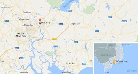 Khoi cong du an 270 ty xu ly dioxin o san bay Bien Hoa - Anh 2