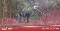Làm rõ nghi án bắt hàng chục 'con bạc' trong rừng