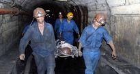 Quảng Ninh: Thực thi nhiều biện pháp nhằm giảm thiểu tai nạn lao động