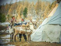 Bộ lạc tuần lộc cuối cùng ở Mông Cổ