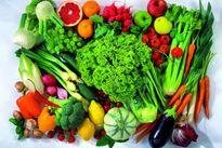 Ung thư dạ dày: Thực đơn và chế độ ăn uống chuẩn nhất dành cho người bị ung thư dạ dày
