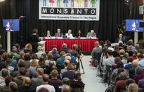 Monsanto đã tự 'bán mình', liệu còn có thể kiện?