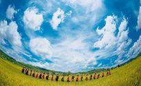 Lại thêm một bộ ảnh kỷ yếu 'chất đến phát ngất' bên cánh đồng lúa vàng Đắk Nông