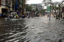 TP.HCM mới mưa đã ngập