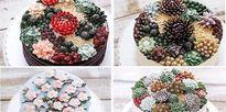 Những chiếc bánh kem 'hoa đá' đẹp đến nao lòng khiến không ai nỡ ăn