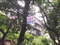 Thêm 147 thuê bao điện thoại bị Sở TT&TT Hà Nội yêu cầu cắt dịch vụ hai chiều