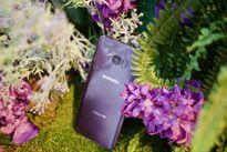Samsung bổ sung 3 màu sắc mới cho Galaxy S8