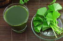 Học ngay hai cách làm sinh tố rau má thơm ngon giải nhiệt ngày hè