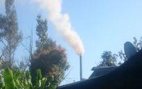 Cơ sở sản xuất gỗ công nghiệp gây ô nhiễm nghiêm trọng khu dân cư