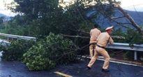 CSGT cưa cây gãy đổ khai thông QL20 sau mưa giông
