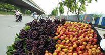 Hà Nội: Tràn lan hoa quả giá siêu rẻ, nguồn gốc ở đâu?