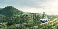 Trung Quốc xây dựng thành phố rừng với hàng triệu cây xanh