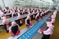 Thịt gia cầm Việt Nam lần đầu tiên được xuất khẩu sang Nhật Bản