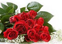 Lễ Vu Lan: Những loài hoa dành riêng trong ngày Lễ Vu Lan