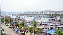 Quảng Ninh: Ngừng cấp phép tham quan đối với tàu du lịch từ 13h chiều 16/7