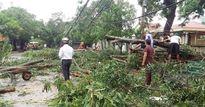 Nghệ An: Bão số 2 đi qua khiến một người bị chết