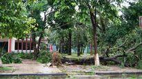Nghệ An: Bão lớn làm tàu chìm, 13 người mất tích