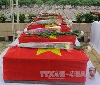 Tìm thấy 22 hài cốt liệt sĩ hy sinh trong trận đánh An Điền năm 1974