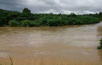Mưa lớn kèm lũ gây ngập nhiều vùng cà phê, lúa tại Lâm Đồng