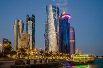 Bị cấm vận, Qatar 'cuống cuồng' xây kho chứa lương thực khủng