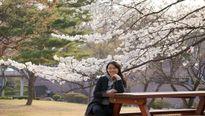 Nữ nghiên cứu sinh mất tại Hàn Quốc đã được gia đình đưa về nước
