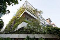 Scent house, ngôi nhà mộc rợp bóng cây xanh ở Hà Nội