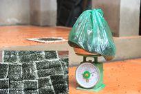 Kinh hoàng người dân thu được hàng ki-lô-gam ruồi gần bãi rác lớn nhất thủ đô